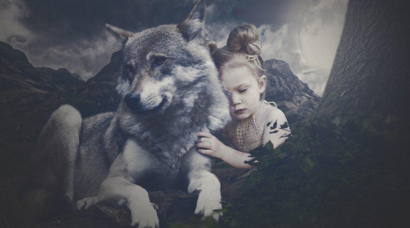 Wie Menschen und Wölfe zueinander fanden