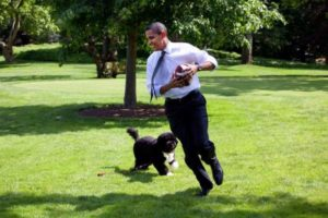 Bo in Oval Office