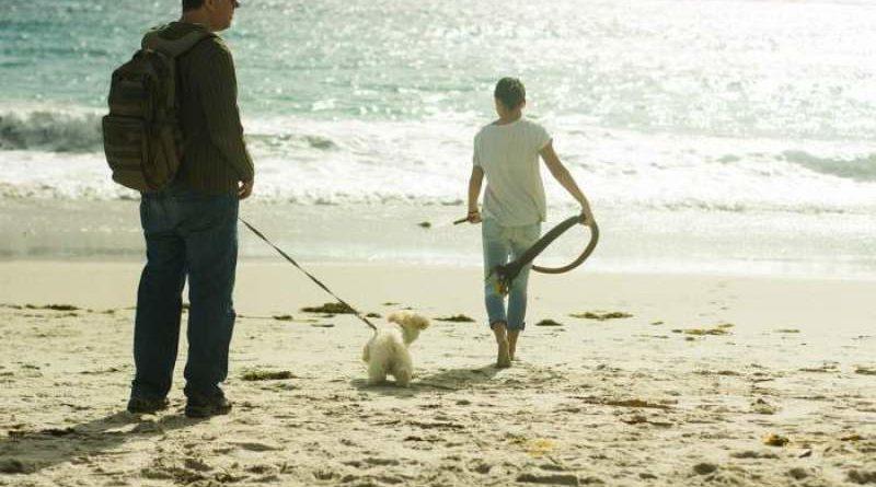 Hund als Freund